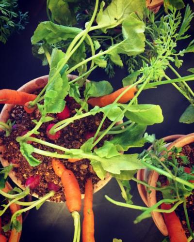 sund-catering-firmaarrangement